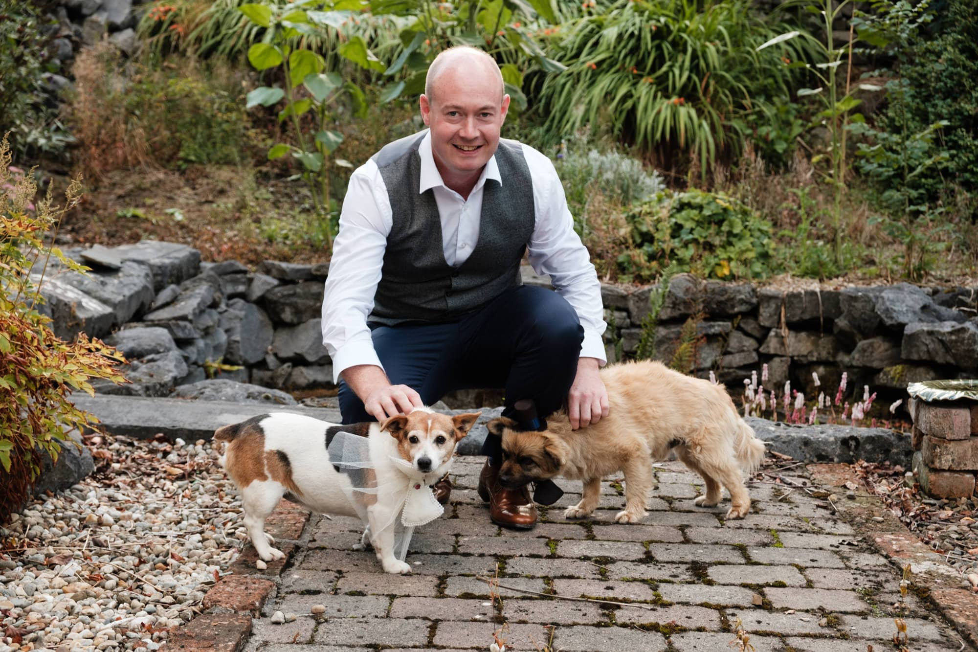 groom at home with dogs before wedding